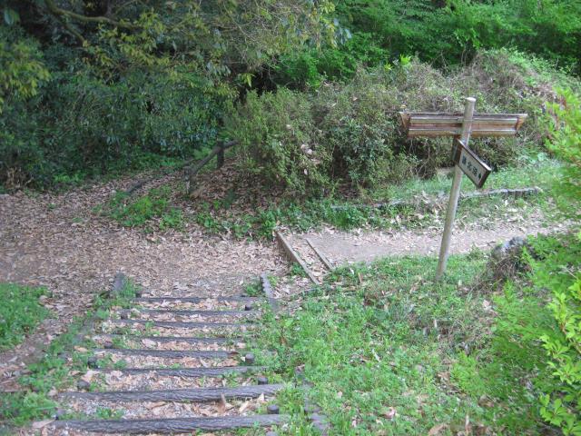 分岐(左:宿谷の滝、右:物見山)
