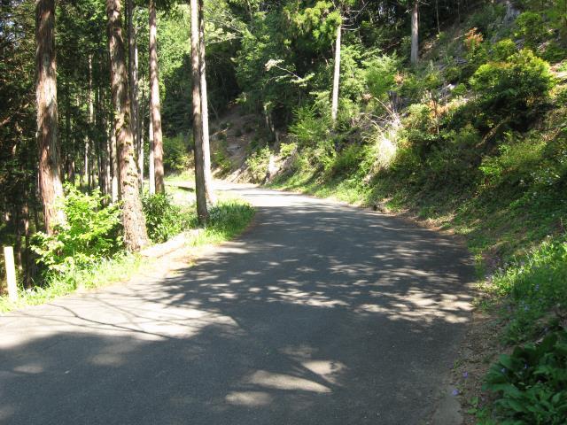 スカリ山への道は車道