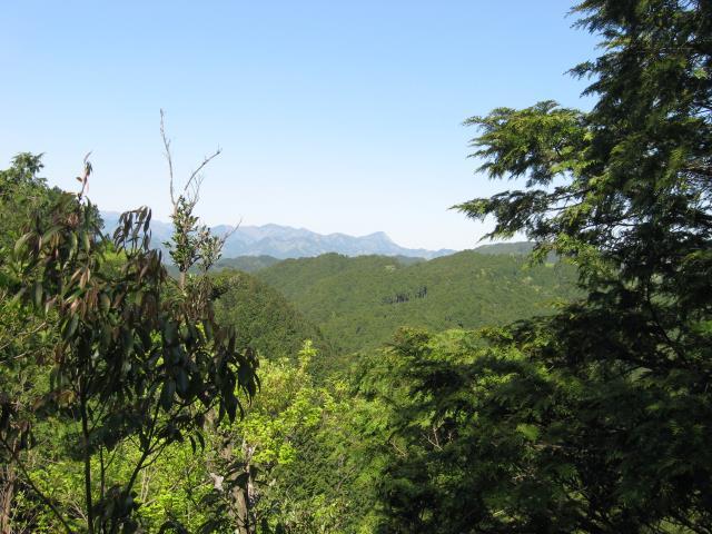 観音ケ岳からの見晴し