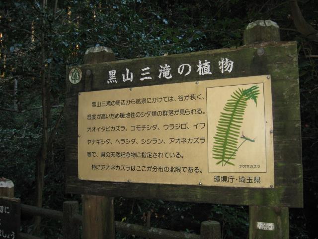 黒山三滝の植物についての解説板