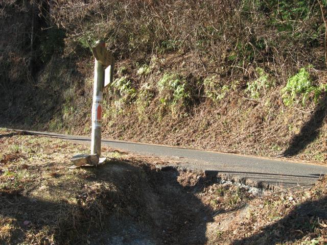 登山道から車道へ