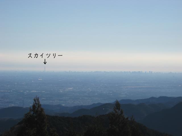 関八州見晴台の山頂からみたスカイツリー