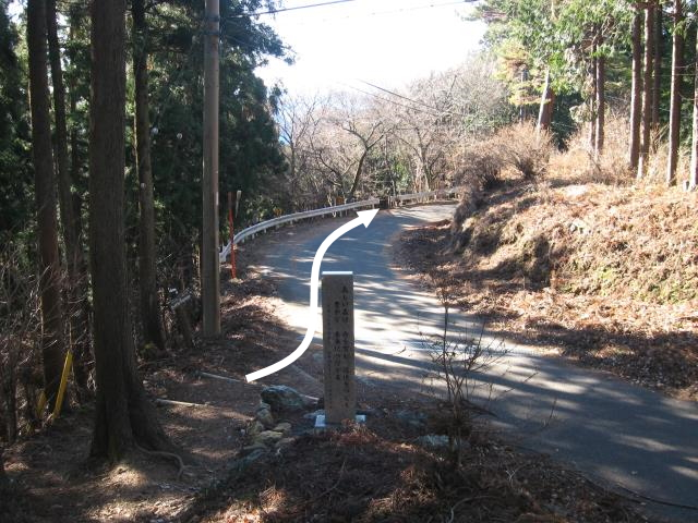 車道と合流