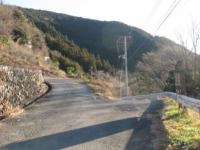 登山道への最後の分岐(左の道を上って行く)