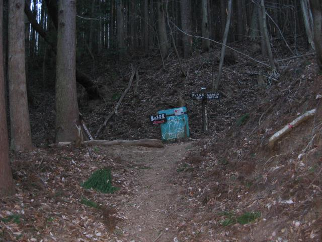 登山道の分岐点