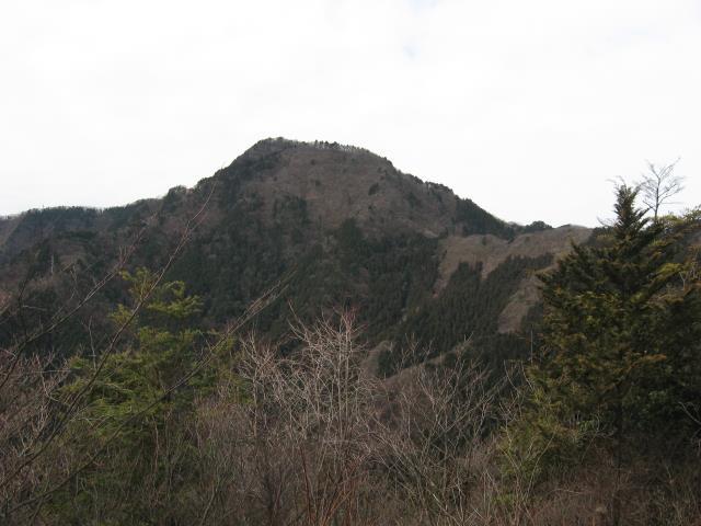 上高岩展望台から見た大岳山