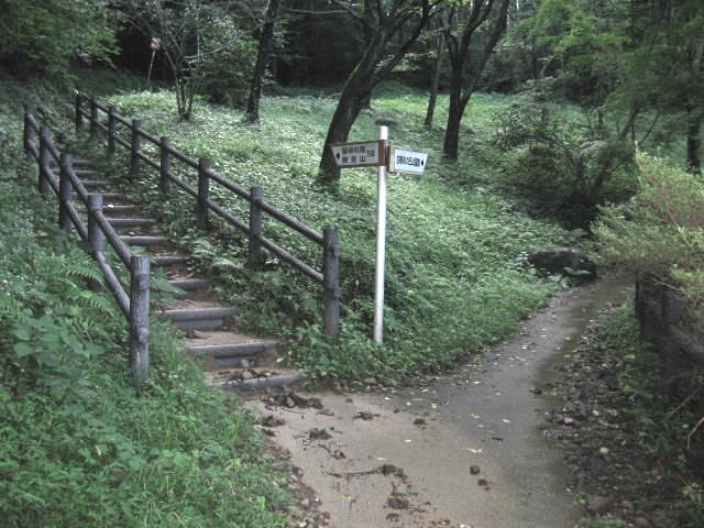 分岐(宿谷の滝へは左の階段を上る)