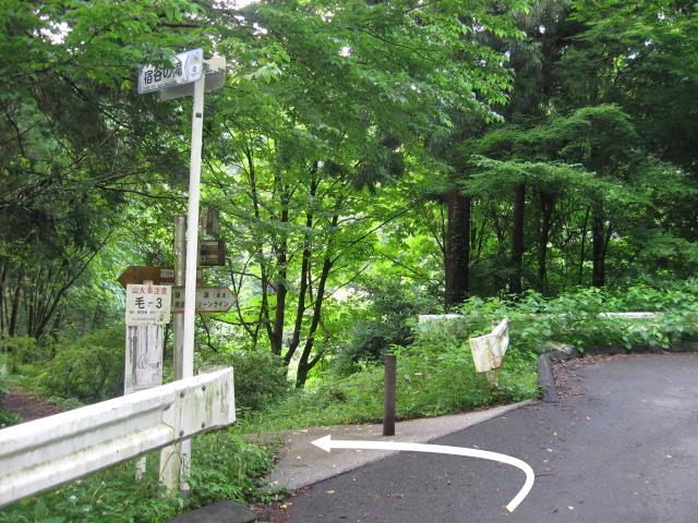 車道の左側に宿谷の滝への入り口がある