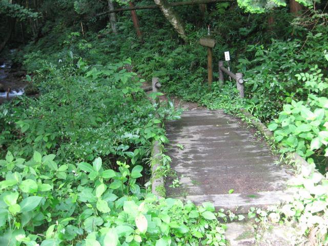 公園の端にある木製の橋