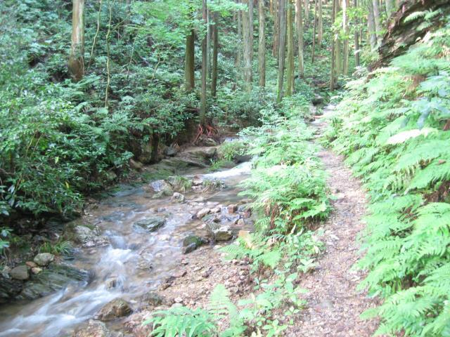 小川沿いに伸びる野残道