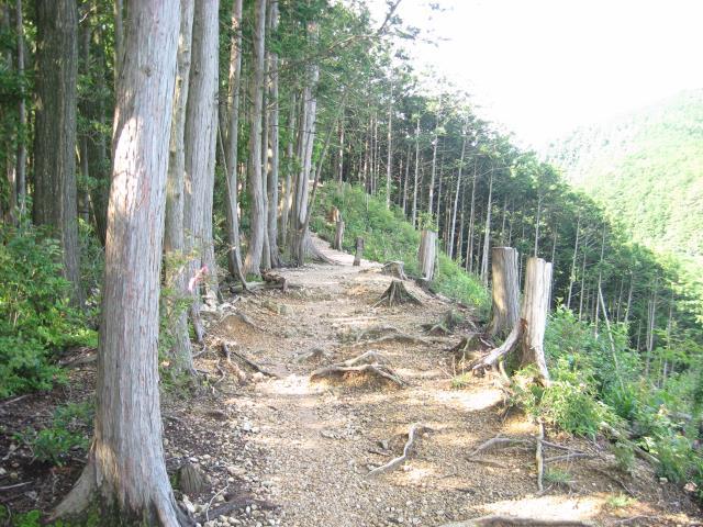 ヤセオネ峠の最上部