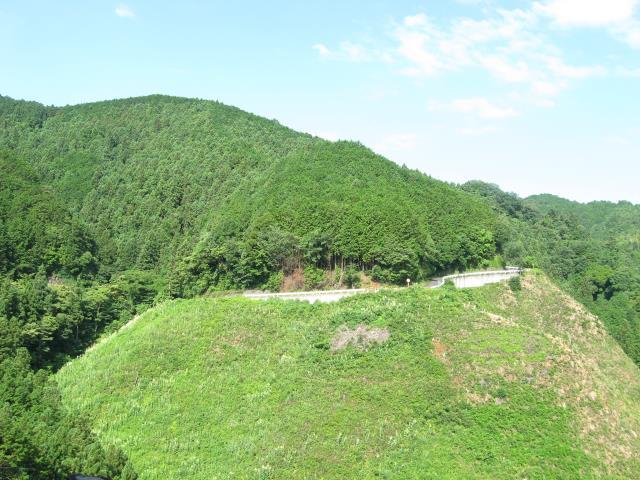 ヤセオネ峠からの眺め(青空と森の濃い緑色が美しい)