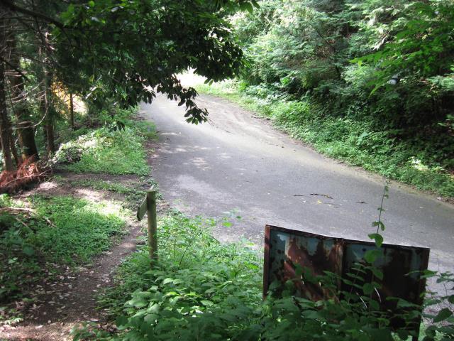 車道と合流し横断する