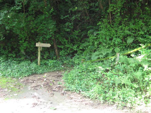 車道の向かい側にある登山口
