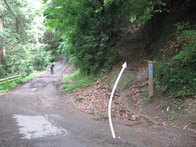 車道の反対側にある登山道入口