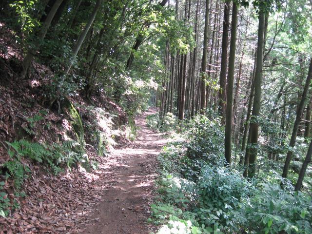 北向地蔵から鎌北湖への登山道