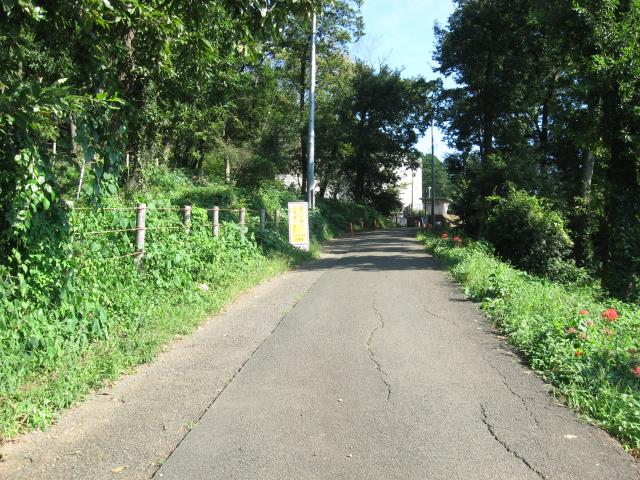 登山口への舗装道路