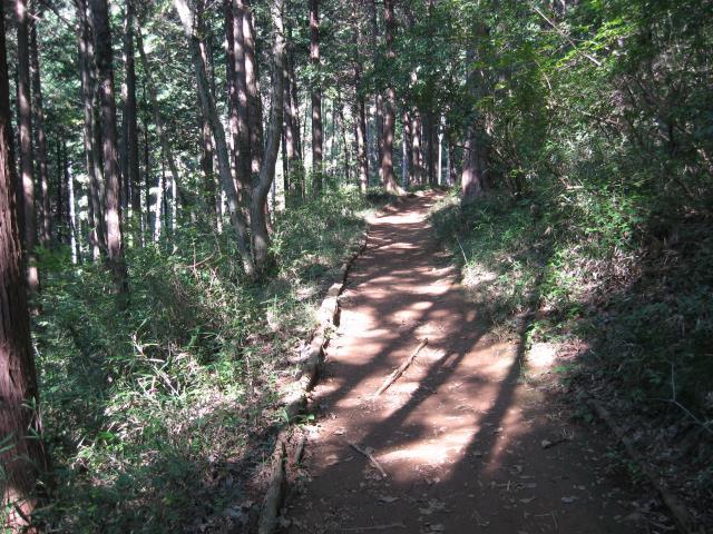 男坂への登山道