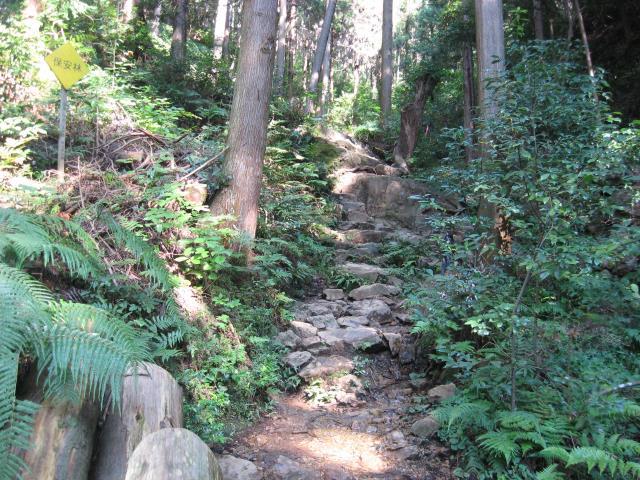男坂の登山道