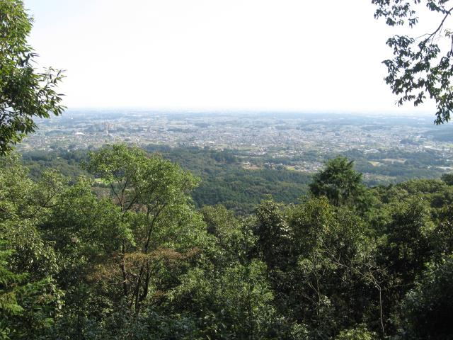 日和田山からの眺め