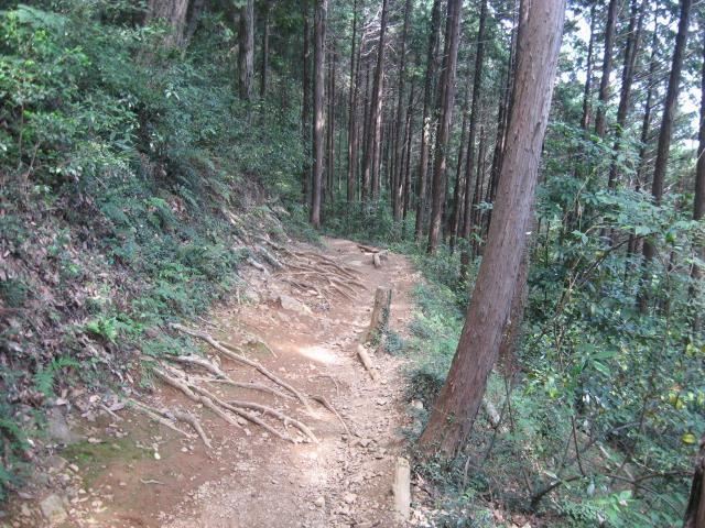 女坂の登山道